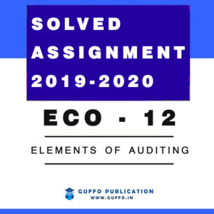 ECO - 12 Elements of Auditing IGNOU SOLVED ASSIGNMENT 2019 2020